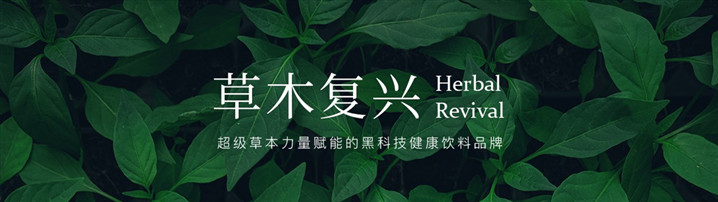 """商業計劃書范文丨新型飲品健康草本飲料品牌""""草本復興"""""""